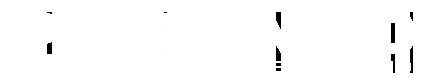 Pyramid Business Studio - Affärssystem